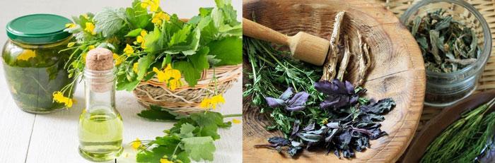 Травы и оливковое масло