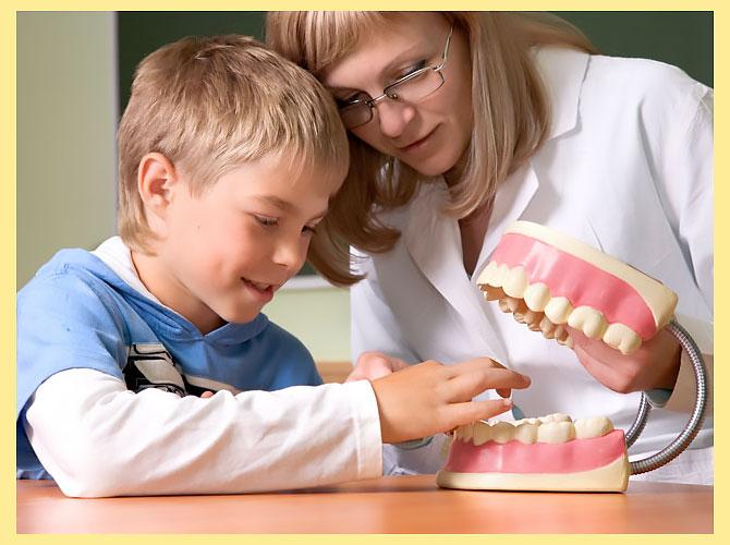 Макет челюсти, мальчик и стоматолог
